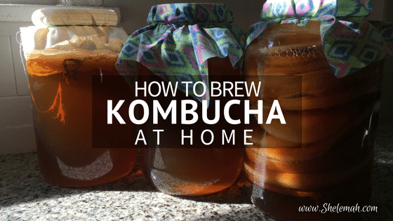 How to Brew Kombucha at Home