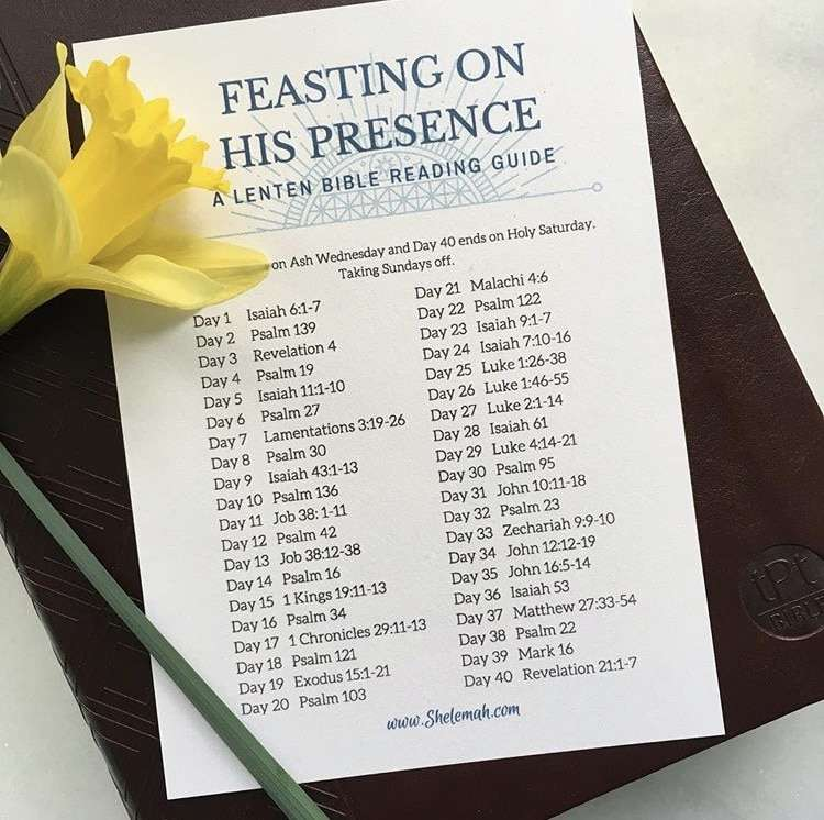 Lent Bible study reading guide with daffodil and Passion Translation Bible
